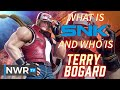 What is SNK, and Who's Terry Bogard?