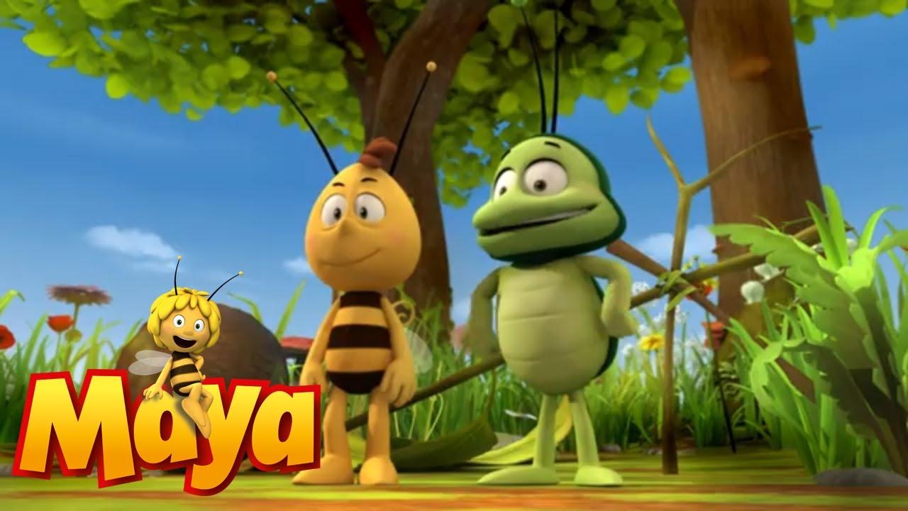 Crack! - Maya the Bee - Episode 8
