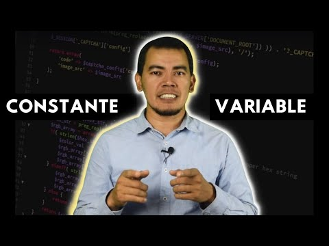 Variables y constantes en programación