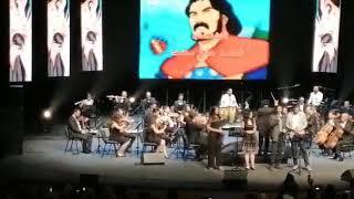 طارق العربي طرقان - شارة فلة في مهرجان ايام قرطاج الموسيقية