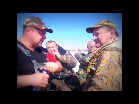 охота кабаны прикол смотреть онлайн видео от d98811 в