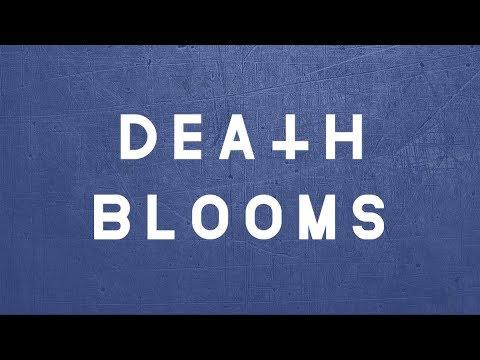 Death Blooms Download Festival Interview 2018