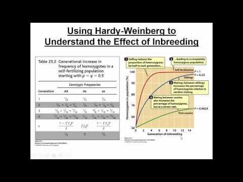 Population Genetics II (Practical Applications of Hardy Weinberg)