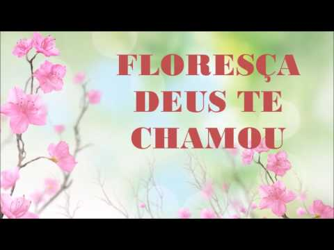 Floresça Noemia Martins Letrasmusbr