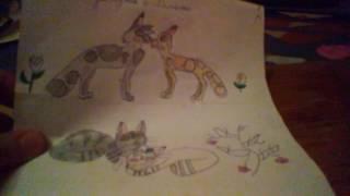 Рисунки коты воители #1