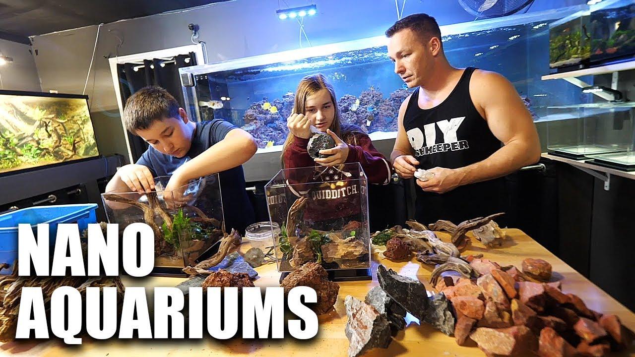 FINAL aquarium set up - NANO fish tanks!!!