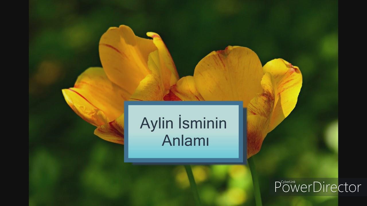 Aylin Isminin Anlami Youtube