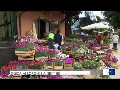 TGR Lazio 23 aprile 2016 ore 14