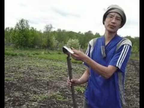 видео: Ленивый огород .flv