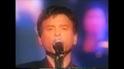 Pierre Rapsat le dernier concert