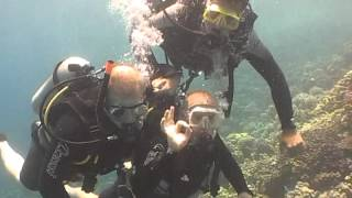 AW36OME Scuba Dive Trip Red Sea ( Hurghada )