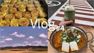 [Vlog #4] 일상_집밥 브이로그/곱창전골/추석음식…
