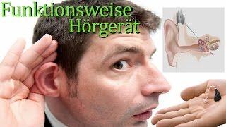 Wie funktioniert ein Hörgerät? - Quick-Info #4