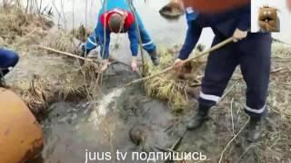 Это Россия!Только Русские ПРИКОЛЫ смотреть онлайн!#2