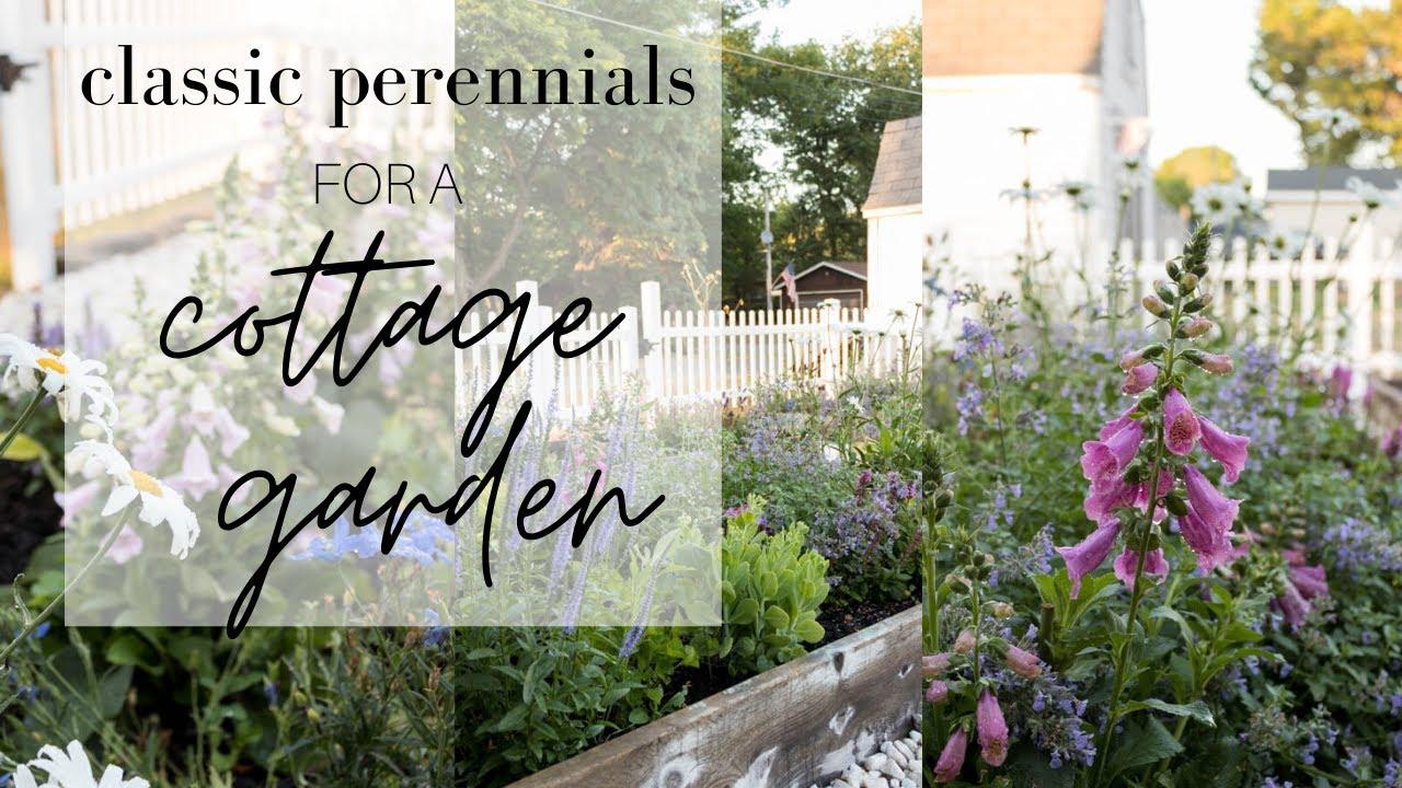 Classic Perennials for a Cottage Garden