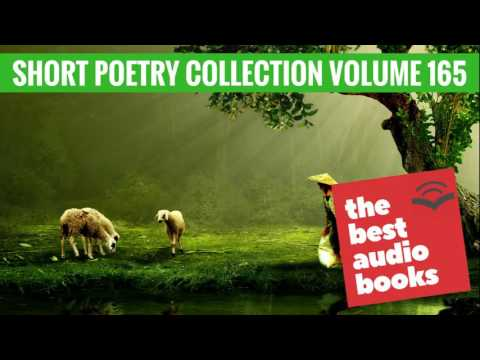 Best Short Poetry Collection Volume 165 | Best Poems, Poets, and Poetry | Full Audiobook