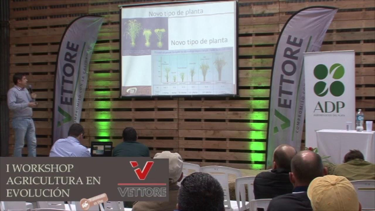 1º Workshop Agricultura en evolución  Palestra 03 Vettore Transmissão Fly Camera
