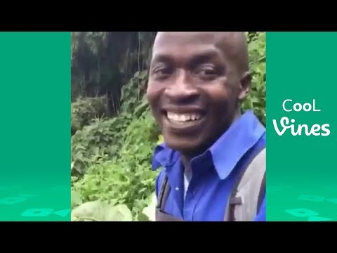 Funny Vines February 2018 (Part 1) TBT Vine compilation