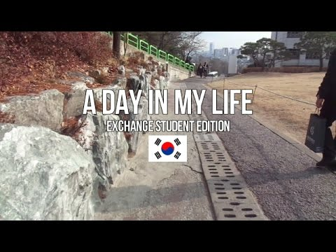 A DAY IN MY LIFE | Exchange Student in SKKU Seoul Edition