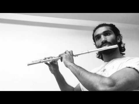 Flute Cover - Elena Kats-Chernin - Eliza's Aria, from Wild Swans ballet (Lloyds TSB)