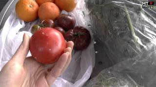 Little Italy Farmers Market San Diego