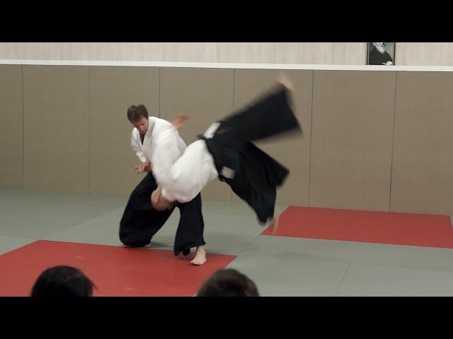 Aikido: Pascal Guillemin Sumer-Seminar 2014