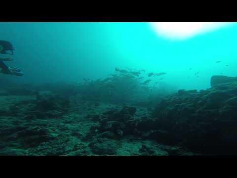 På dybt vand med Frede ...