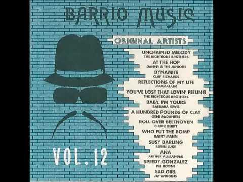 Barrio Music Vol  12