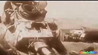 Дон Поляков – Курская дуга