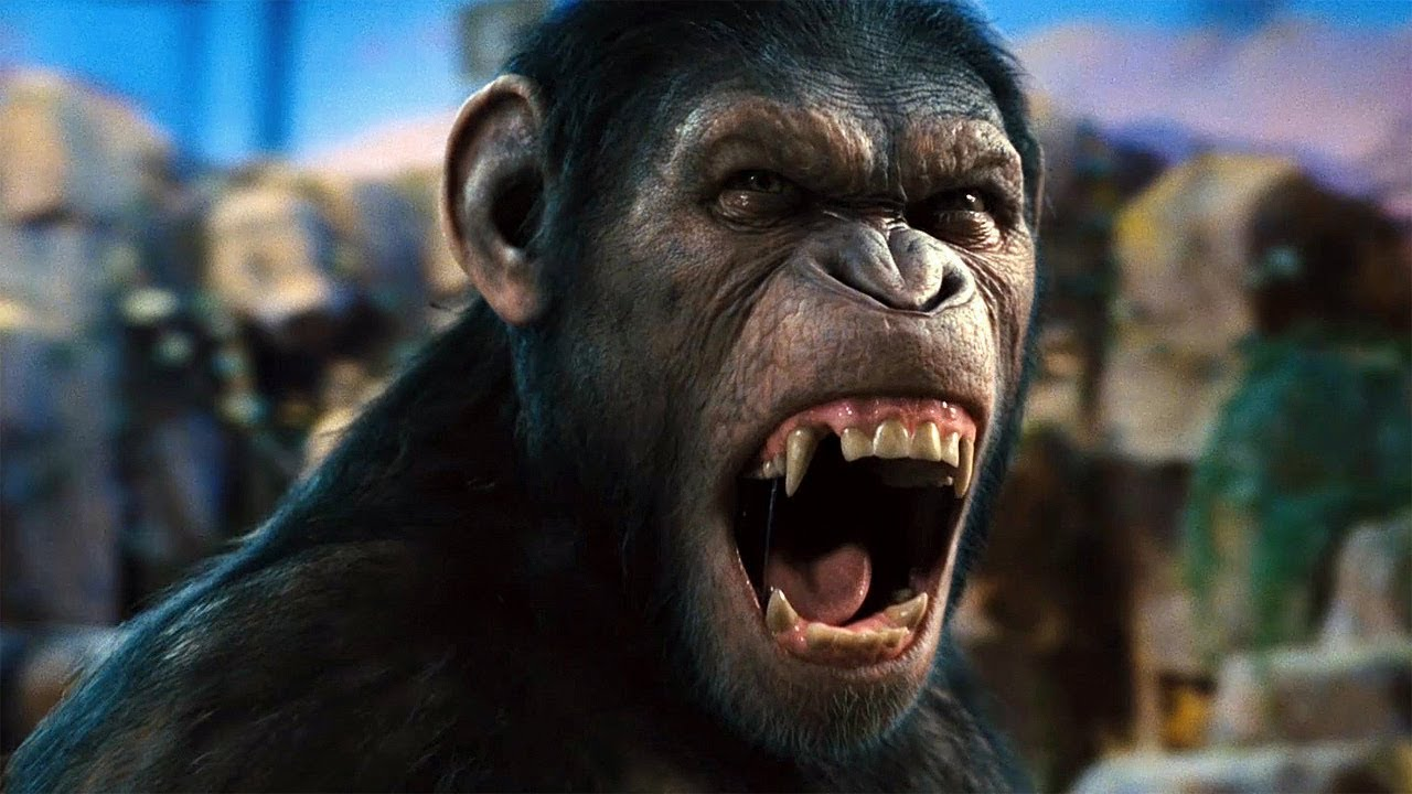 """No!"" Scene 