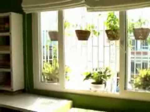 Nhà đẹp - Phong cách của bạn: Chọn cây xanh trồng trong nhà