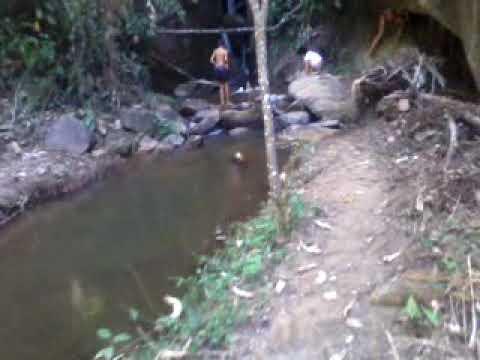 Anaconda emgole menina ao vivo