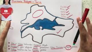 6. Sınıf Sosyal Bilgiler - Ülkemizin Kaynakları - Ülkemizde Tarım -1