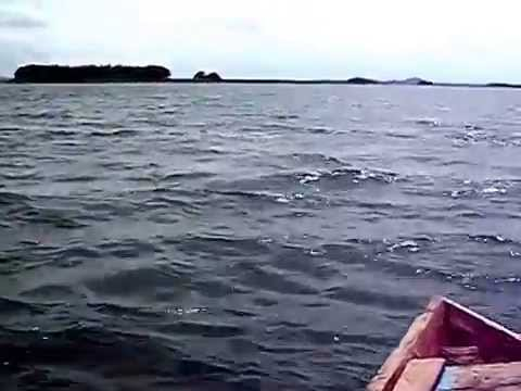 unique island of kangsabati  river