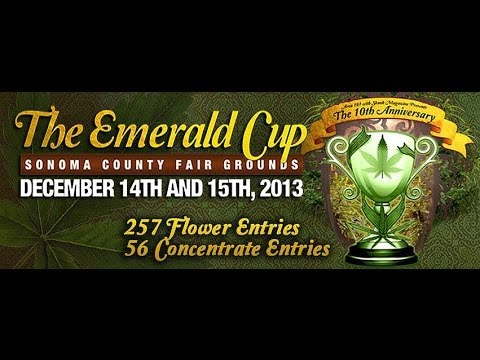 2013 Emerald Cup Organic Trends In Breeding with Green House Seeds etc.