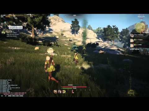 Black Desert Online Gameplay Closed Beta HD+ Max Setting