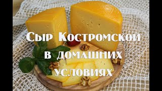 Сыр Костромской мастер класс по приготовлению в домашних условиях