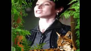 АННА-ДЕТЕКТИВ (Нина Аркадьевна)