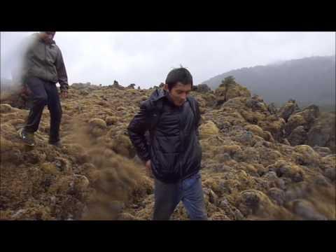 Trekking Volcán Carran, Futrono, Region de los rios, Chile