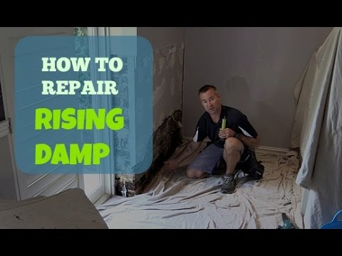 How To Repair Rising Damp In A Wall  YouTube