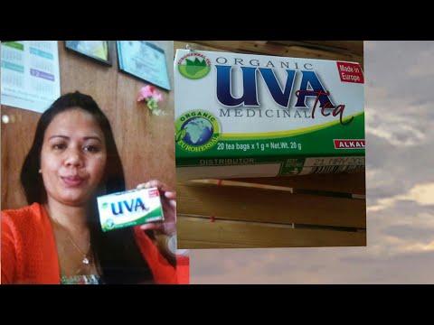 VLOG Part 2# UVA TEA REVIEW AND Q&A# Jean Vlog#