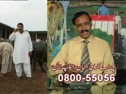 ZARAE GEET (AGRICULTURAL SONG ) lyrics Dr. Ashraf Sahibzada