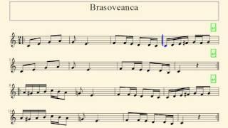 [RO] Partitura - Brasoveanca