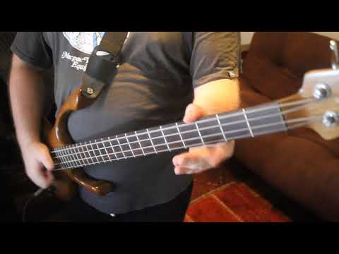 American Life - Primus - (Bass Cover)