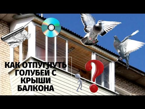 Как отпугнуть голубей с крыши балкона.Моё изобретение  чудо-отпугиватель работает на 100 %