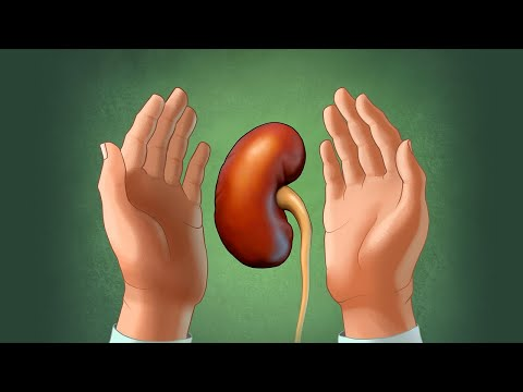 Heal Your Kidneys with Traditional Chinese Medicine