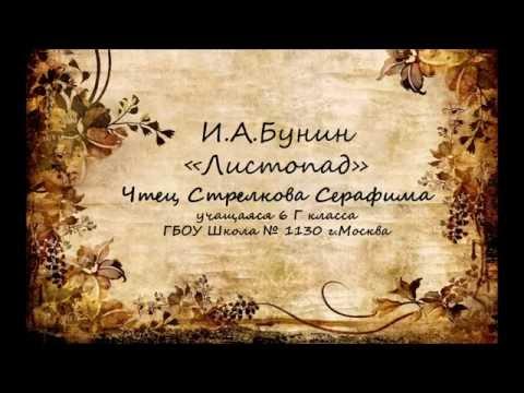 Изображение предпросмотра прочтения – СерафимаСтрелкова читает произведение «Листопад (Осенняя поэма)» И.А.Бунина