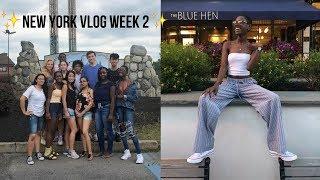 New York Vlog Week 2