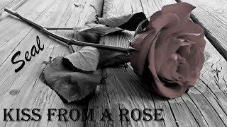 Kiss From A Rose Seal (TRADUÇÃO) HD (Lyrics Video)