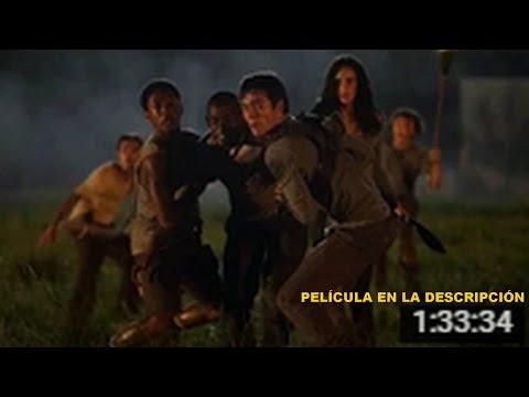 Maze Runner: Correr o Morir Película completa en Español Latino